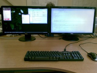 Works 2 x 24inch Monitors