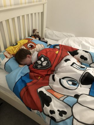 Ethan Paw Patrol Bed Ethans Sleep Over At Nanas April 2019