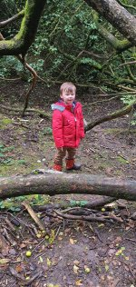 Ethan Forest Burbage Common And Woods Walk And Play Oct 2020