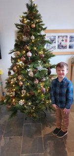 Ethan Garage Christmas Tree Dec 2020