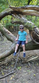 Ethan Tree Burbage Common Afternoon Walk Sept 2020