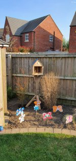 Finished Building Bird House April 2020